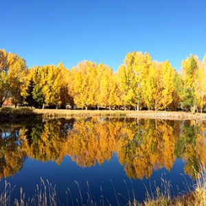 Carbondale, CO – Blue Lake Neighborhood